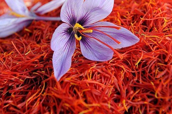 معامله بیش از 2 تن زعفران در بورس کالا